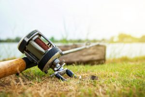 Baitcaster vs Spinning Reel: Which Is Better?