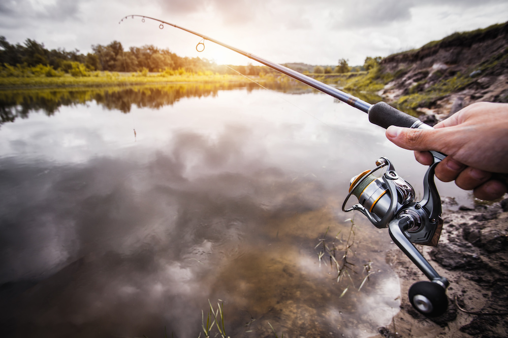 best walleye fishing rods