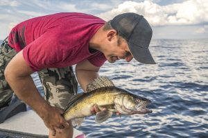 Walleye Fishing for Beginners: A Helpful Guide