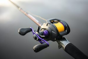 Best Reel for Walleye Fishing in 2020: Complete Reviews With Comparisons