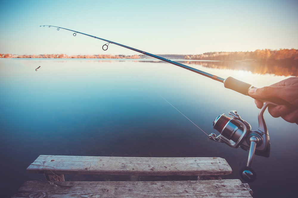 best freshwater fishing rods