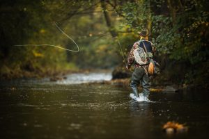 Fly Fishing With a Spinning Rod: Our Top Tips and Tricks